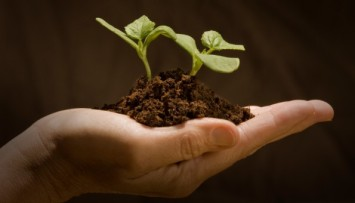 sustainable-agriculture